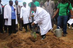 National Tree Planting Day  2018