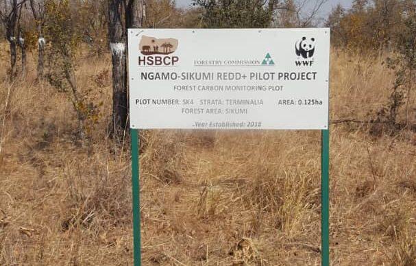 NGAMO-SIKUMI REDD+ PILOT PROJECT